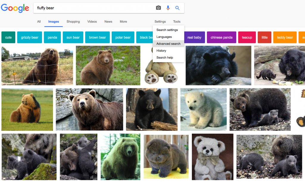 Google Advanced Search